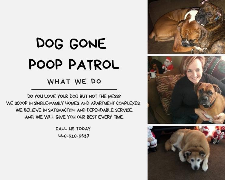 dog gone poop patrol what we do