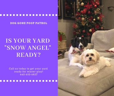yard clean for snow angels